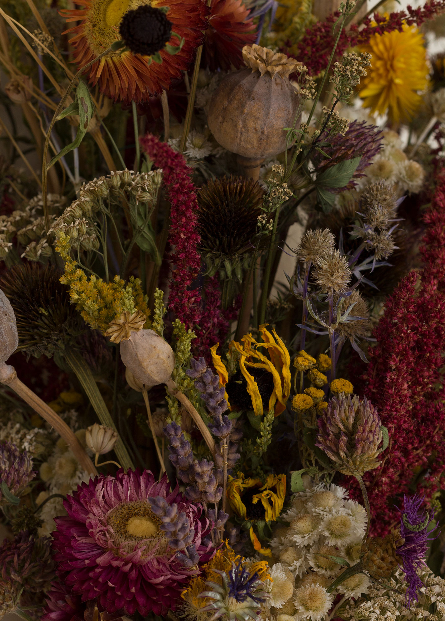 The boquet (detail), 2019. Dried flowers picked during seven summers.